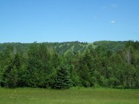 The old ski hills, just around the corner from Devil's Elbow on Ski Hill Rd.
