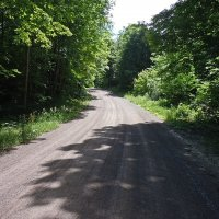 Dirt detour on Big Cedar.